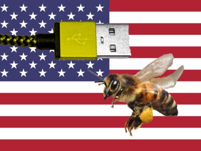Abkürzung für Biene aus den USA