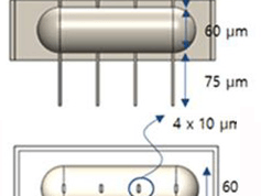 Microrobots de 220 µm mus par cils vibratiles