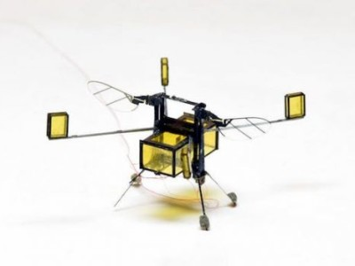 RoboBee : rien à envier aux insectes volants