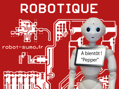 Tournoi national de robotique de Nîmes
