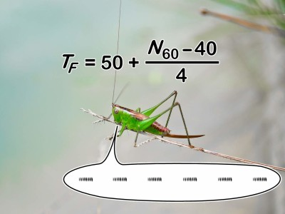 Emulating a Thermometer Cricket with Arduino