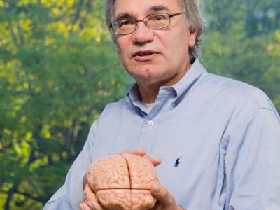 Voelen en bewegen via implantaat in de hersenen