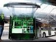 Bus rijdt op mierenzuur