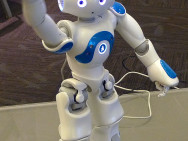 Ethic robots may pose an additional risk to their environment. Photo credit: Anonimski