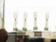 Électrodes en carbone vitreux. Photo: Sam Kassegne