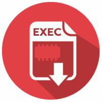 Firmware Software Exec icon png