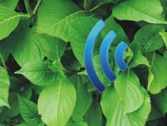 Plantenna ― l'Internet des plantes ?