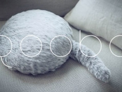 Qoobo: A robotic pet/cushion?