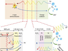 Das Prinzip der neuen Elektrode (Bild: TU Delft/Wilson Smith u.a.)