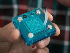 Modell der Brennstoffzellen/Superkondensator-Kombination (Foto: Reed Hutchinson/UCLA)