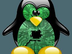 Linus Torvalds aka Mr Linux ist kein ARM-Fan