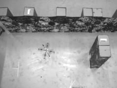 Facettenaugen für Drohnen