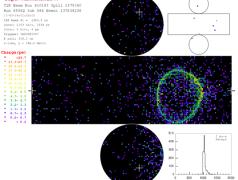 Das entdeckte Muster von Elektron-Neutrino-Ereignissen am Super-Kamiokande. Bild: Universität Tokyo.