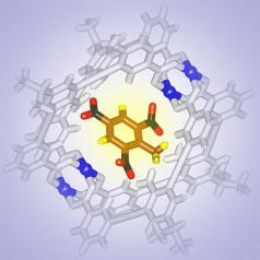 Nanosensoren sporen TNT op