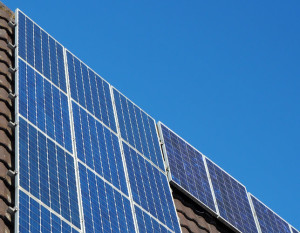 Replace all solar panels with a coat of paint