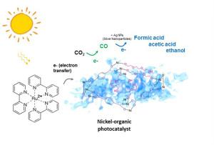 Neuer Katalysator verwandelt CO2 exklusiv in CO. Bild: Kaiyang Niu und Haimei Zheng; Berkeley Lab.