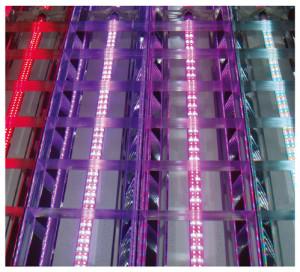 Nouvelles LED de puissance pour l'agriculture