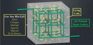 Frankenstein Goes Open Source with Reprap 3D Printer