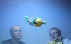 U-CAT, a Biomimetic Undersea Robot
