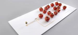 Tomato Powered LED