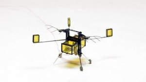 RoboBee can do everything a flying insect can