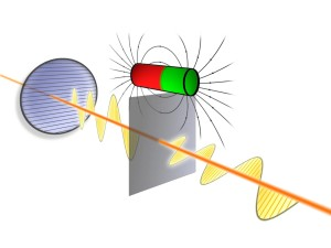 Quantum efect rotates polarization direction