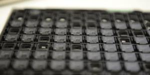 Open-source-Prozessor für IoT-Geräte