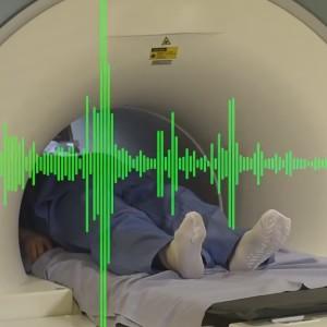 Wie verarbeitet das Gehirn Musik?