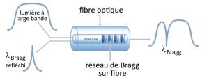 Capteur de température optique