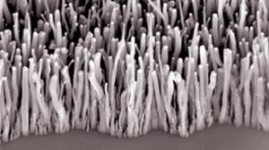Forêt de nanotubes pour énergie verte