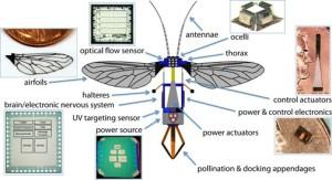 Des abeilles-robots pour sauver des plantes ?