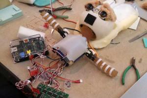 Une loutre au cœur d'Arduino