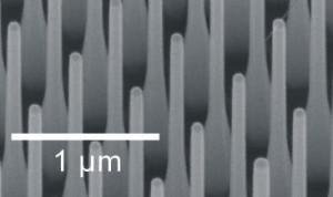 Nanodraden openen deur naar betere LED's