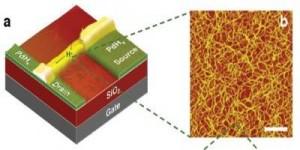 Transistor voor communicatie met levende organismen