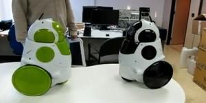 Twee robots die elkaar herkennen