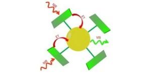 Antennemoleculen versterken infrarood licht