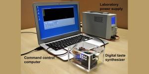 Digitale smaaksynthesizer