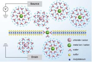 Coulomb-blokkade geldt ook voor ionen © lben.epfl.ch