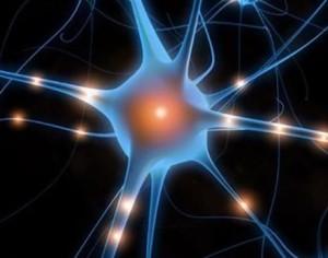 Brein inspireert tot nieuw geheugenmateriaal