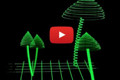 Pilze auf dem Oszilloskop