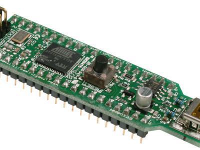 40 pin ARM 7 ECIO