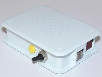 Ready device in Raspberry Pi case