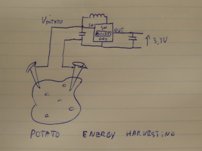 Potato Energy Harvesting
