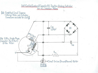 NOVEL Self-Excited Capacitor/DC-Injection Braking Control for an AC Motor.