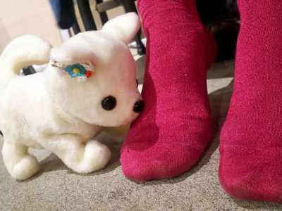 Japanischer Roboterhund schnüffelt an Stinkefüßen