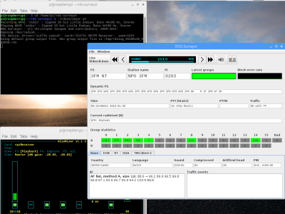 Screen dump RDS Surveyor using HDMI