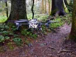 Système de navigation forestière pour drones