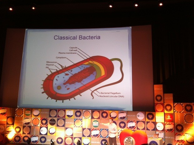 Cathal Garvey Classical Bacteria