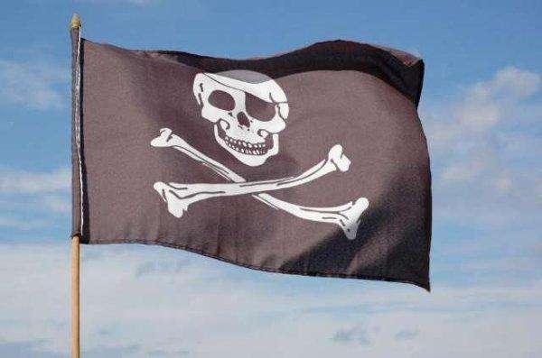 Google wil The Pirate Bay niet verwijderen