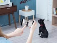 De opvallendste smart home-toepassingen voor huisdieren